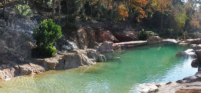 Ces piscines naturelles vont vous faire r ver l 39 union for Piscine naturelle prix